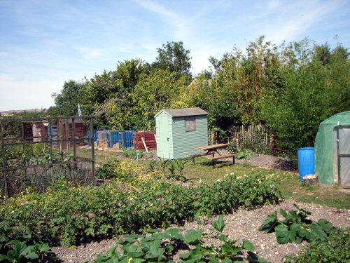 Rushall Allotments